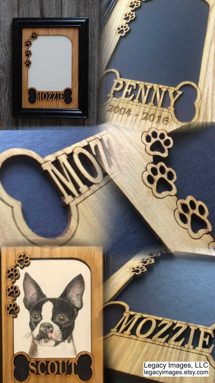 25 best dog picture frames ideas on pinterest hanging wedding