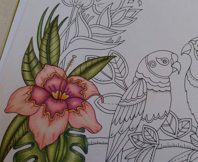 Wip Magicaljungle Johannabasford Johanna Basford Secret GardenColored Pencil TechniquesPrismacolorAdult ColoringColoring