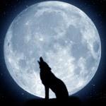 Verdades y mentiras sobre los efectos de la Luna