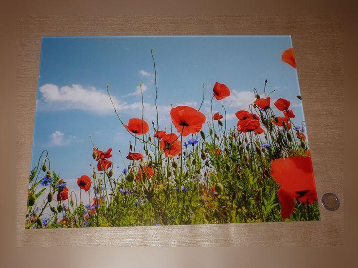 Popular Acrylglas Bild Foto Acryl Acrylbild x