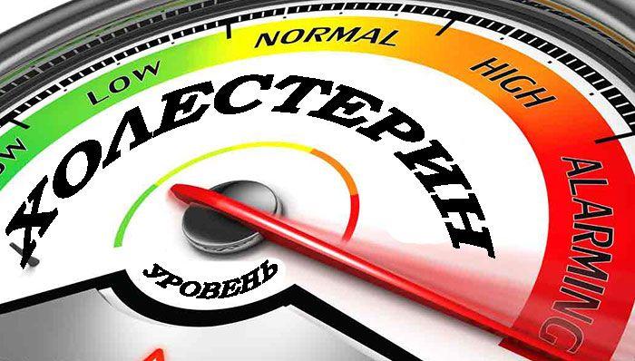 Что такое холестерин, как его можно снизить в домашних условиях и чем грозит повышенный уровень холестерина в крови.