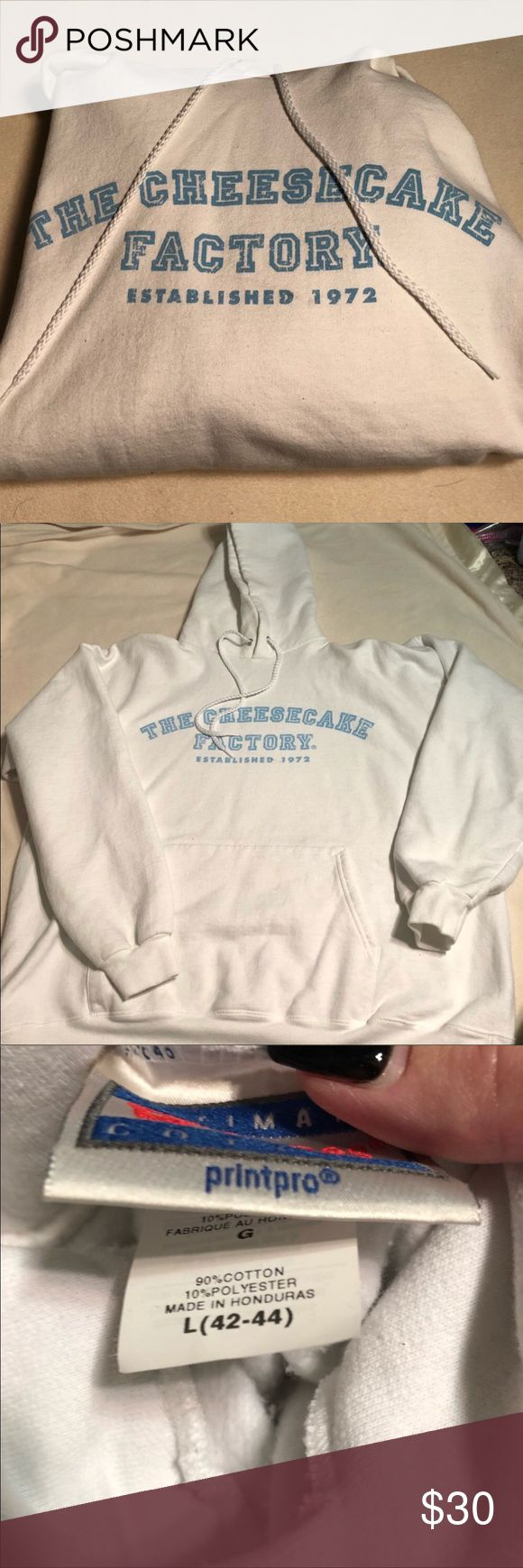 Cheesecake Factory Hoodie Super cute hoodie from the Cheesecake Factory. Size Large. Like new condition. Perfect for any The Big Bang Theory fan!  💜All sales are going towards college tuition for the spring semester! I am majoring in Elementary Education and I love it! Thanks so much for helping me reach my goal of becoming a Kindergarten teacher!💙 Tops Sweatshirts & Hoodies