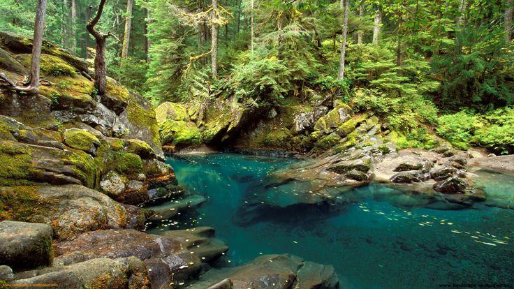 Rivers and creeks