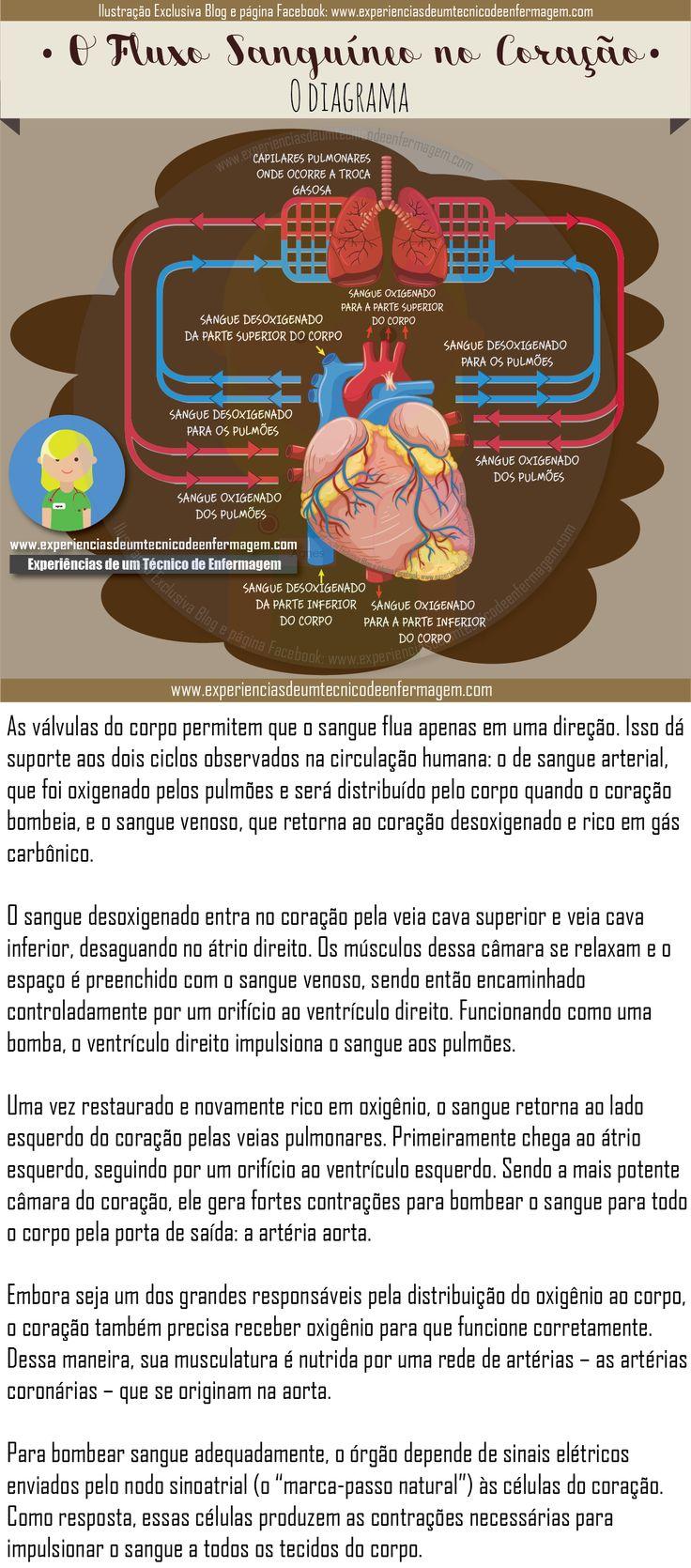 75 o más mejores imágenes de Luana Moura en Estudos en Pinterest ...