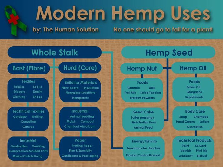 Cornell Industrial Hemp Research Team