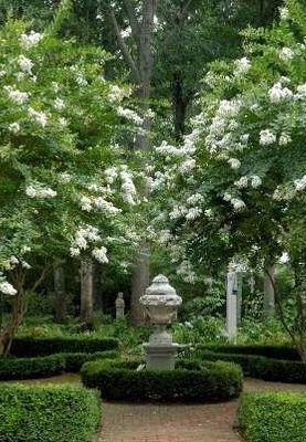 White And Green Garden
