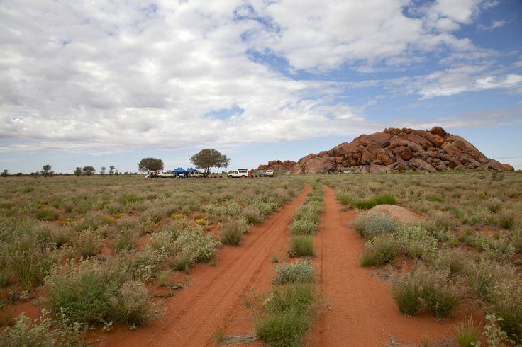 Ngami, Western Australia