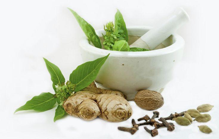 #herbalism