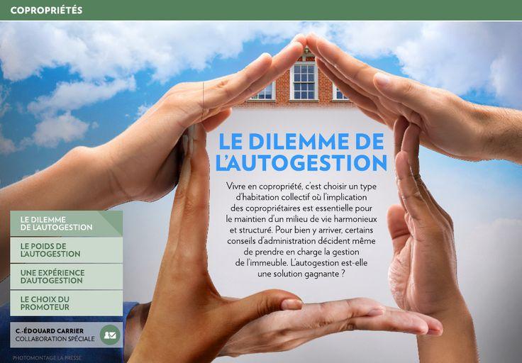 Vivre en copropriété, c'est choisir un type d'habitation collectif où l'implication des copropriétaires est essentielle pour le maintien d'un milieu de vie harmonieux et structuré. alainstjean.com, equipealainstjean.com