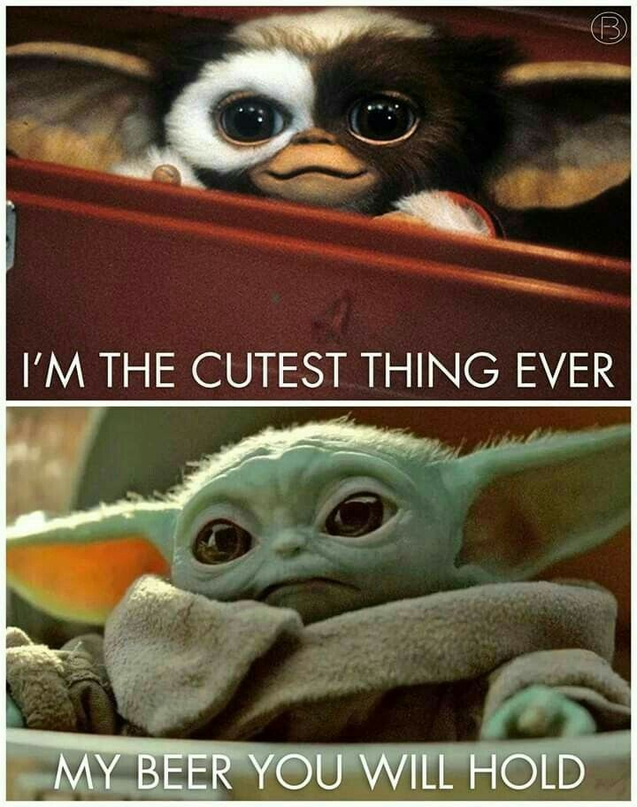 Pin By Kimberly Grosser On For A Laugh Funny Star Wars Memes Star Wars Humor Yoda Funny