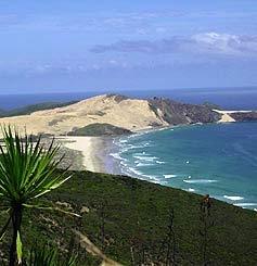 sand dunes in NZ's north island