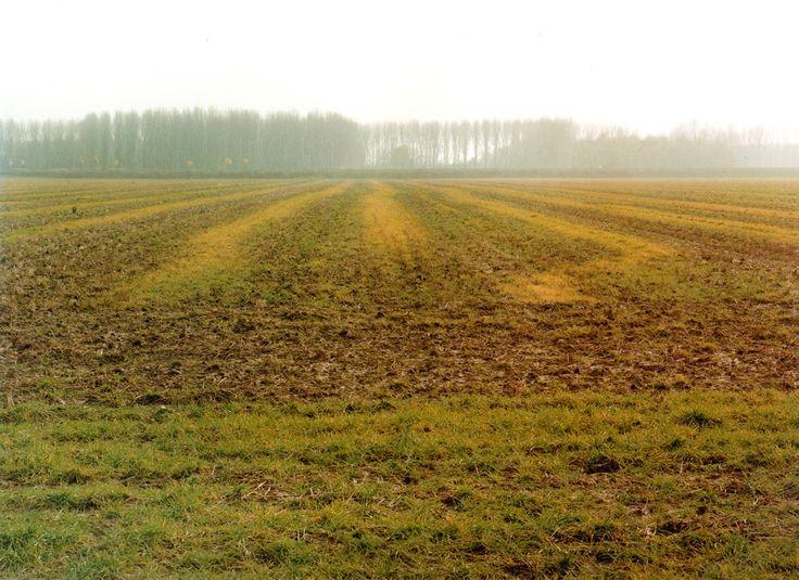 Simone Nieweg, Brachliegendes Feld, Kleinenbroich, 1998