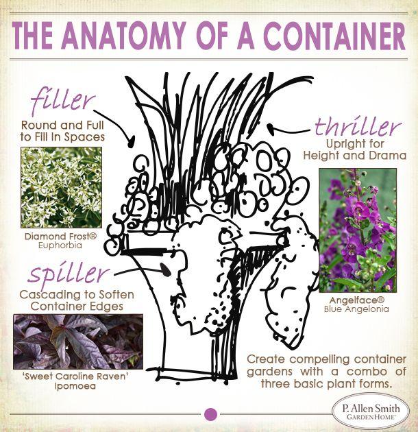 Anatomy of a container garden gardening pinterest - P allen smith container gardens ...