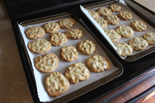 Crispy, Crunchy chocolate chip cookie | Yumm | Pinterest