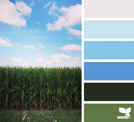 blue sky hues