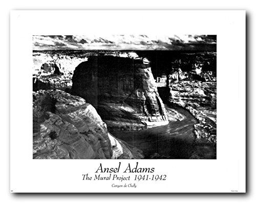 Ansel adams canyon de chelly wall decor art print poster https