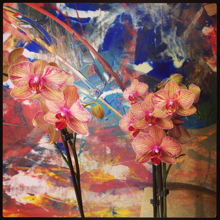 Orchid in front of painting