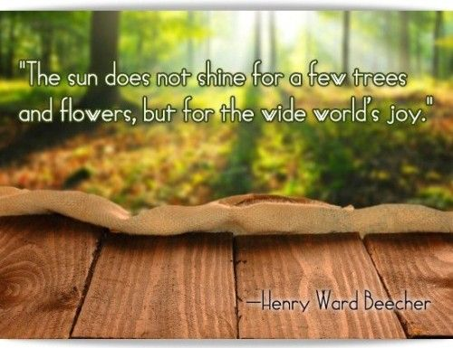 Best 25 Quotes About Nature Ideas On Pinterest