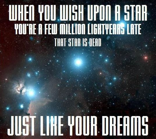Bahaha! Pure inspiration.: Truths Hurts, Dreams Big, Quote, Stars, Giggles, Funny Stuff, So Funny, Hilarious, True Stories