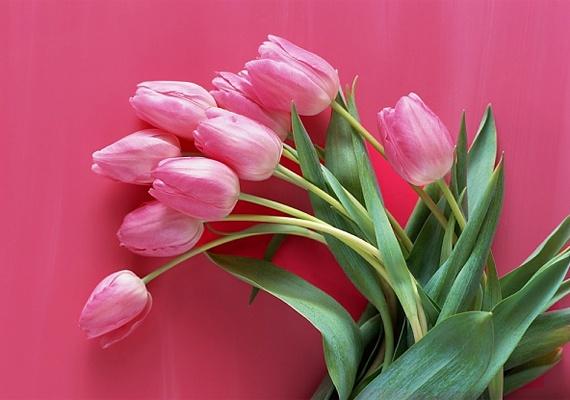 Milyen virágot választ a pasi? Elárulja, mennyire gondolja komolyan | femina.hu