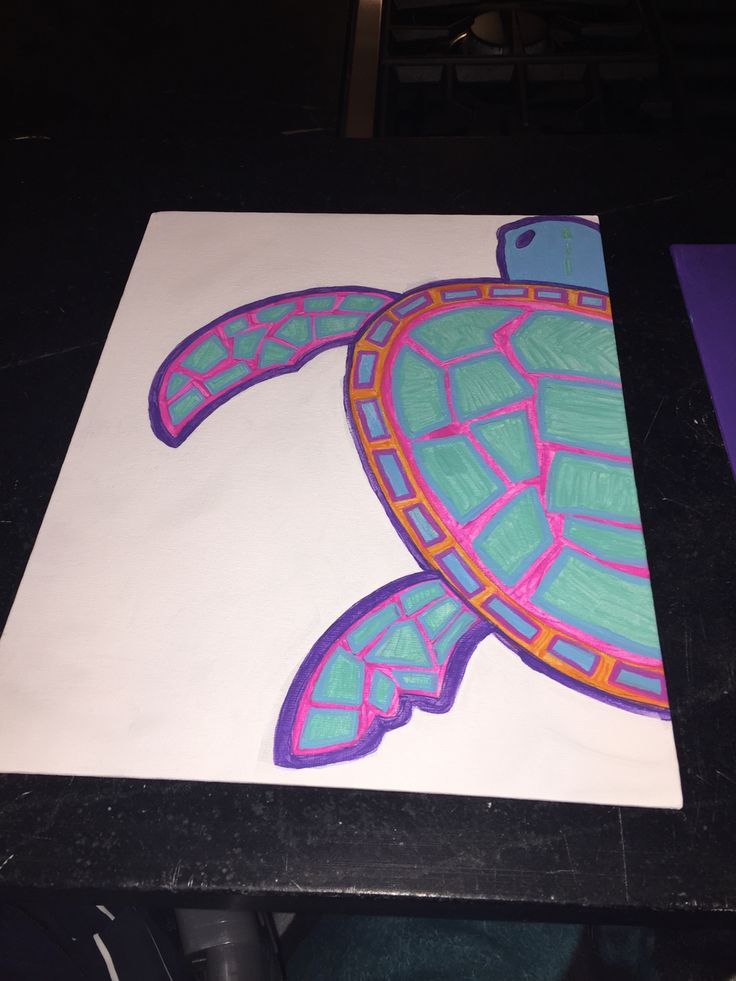 Turtle dz big little canvas