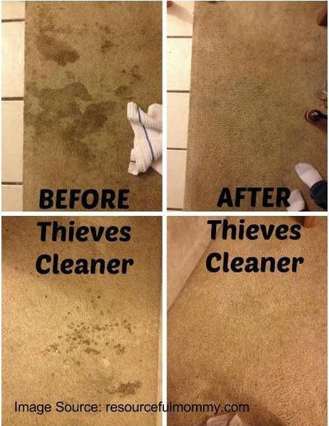 17 Best Ideas About Thieves Cleaner On Pinterest Thieves