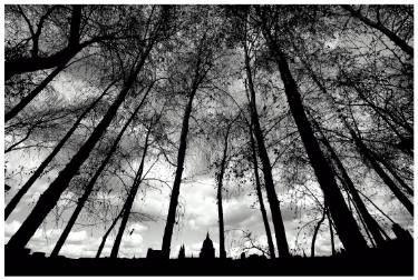 "Saatchi Art Artist Paul Milton; Photography, "" St Paul's Silhouette"" #art"