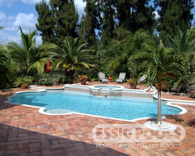 Pool 119 artistic pavers raised beam raised spa tanning ledge with medallion florida for Phoenix swimming pool white city