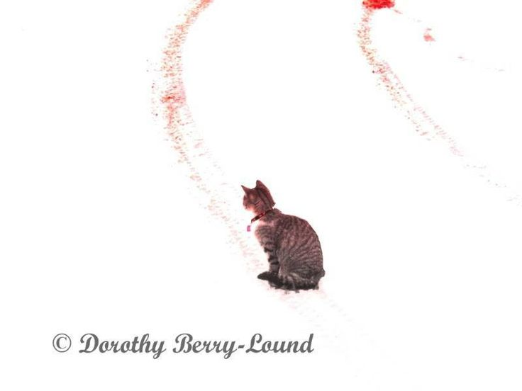 Click the pic to read the article. Bluebottle was feisty. An outdoor cat who came indoors but never lost her feral side. Bluebottle lived life on her terms. She loved log fires and food on demand. But she was less keen on… More #cat #catlover #article
