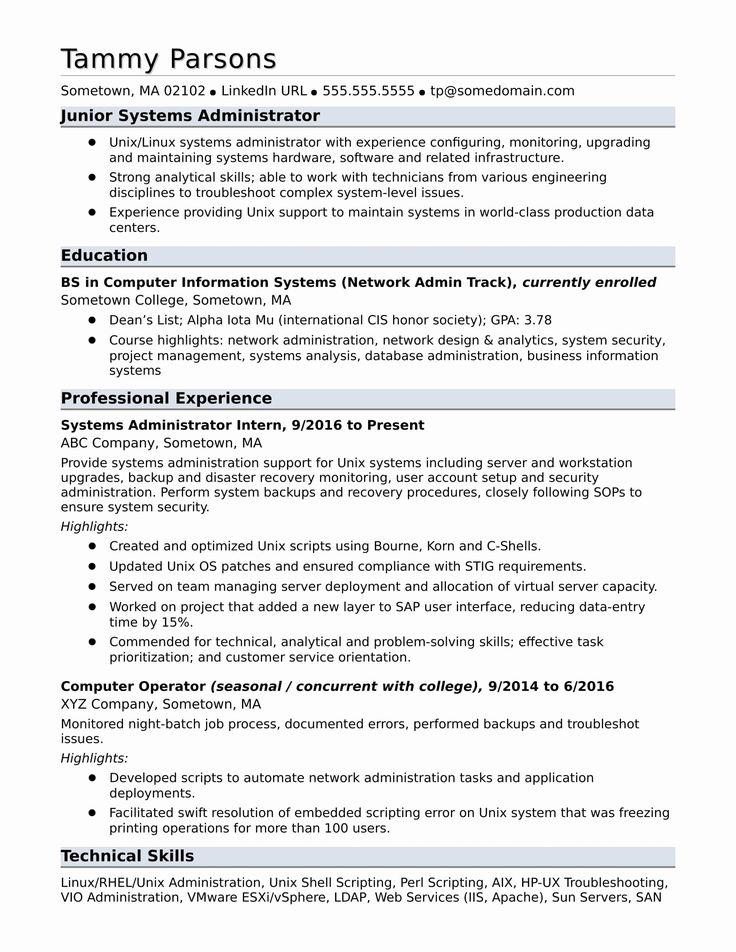 Information Technology Entry Level Resume Lovely Sample