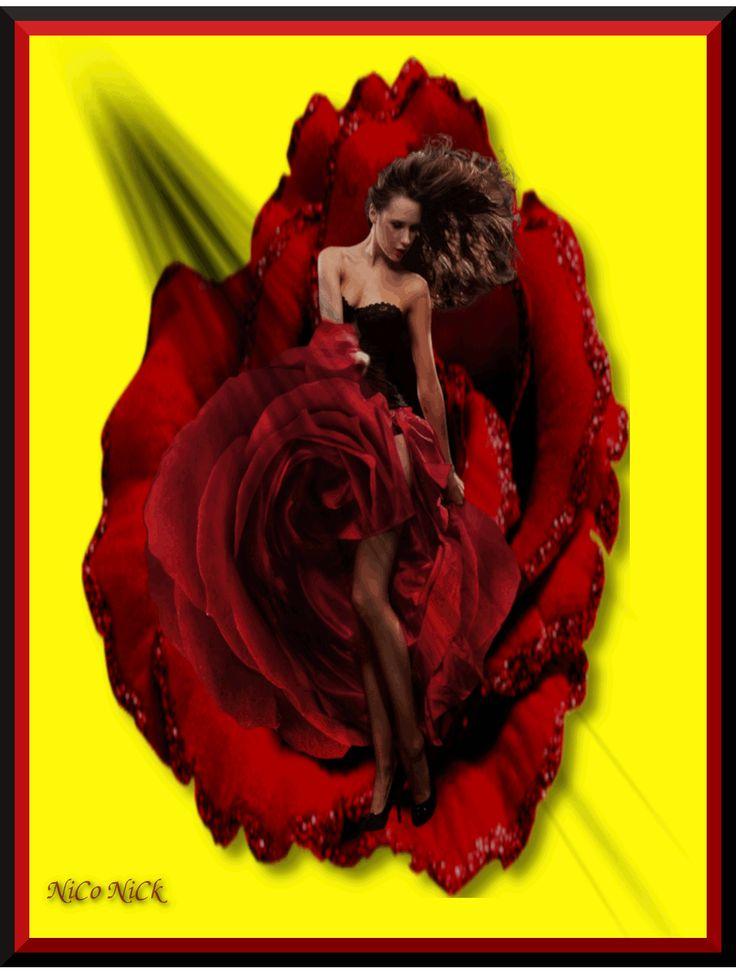 Rózsanő