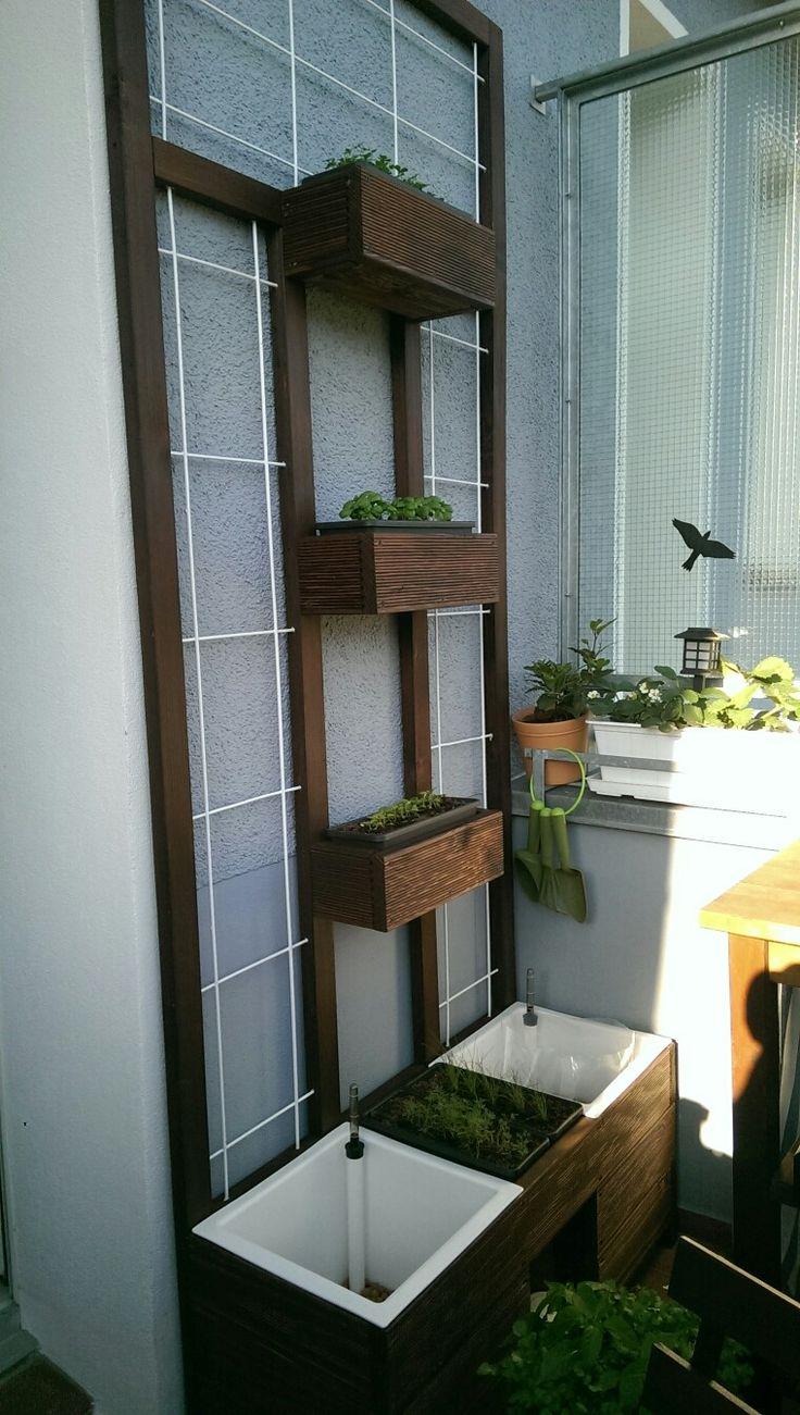 Vertikaler Garten für meinen Balkon. Gebaut aus Terrassendielen (Douglasie), Rahmenhölzern und Spalieren. Am Spalier können nun problemlos Gurken oder anderen Rankenpflanzen auch auf dem Balkon angepflanzt werden.  Vertical garden for my balcony