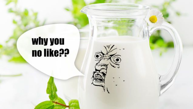 Cow milk: can you substitute it?