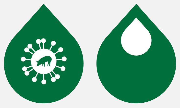 Is the H1N1 Swine Flu Vaccine Safe?