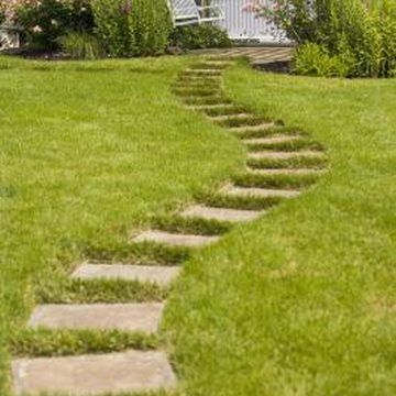 How to Overseed With Centipede Grass | Home Guides | SF Gate