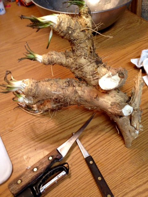 Canning and Cooking---Iowa Style: Canning 101: Homemade Horseradish