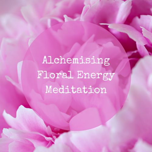 Sign up to my newsletter for weekly inspiration & special offers and receive my Alchemising Floral Energy Meditation for free!