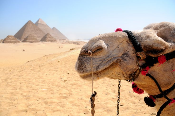 Giza Pyramids, Cheap Holidays to Egypt http://www.shaspo.com/cheap-holidays-to-egypt-travel-packages