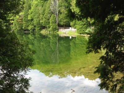 Crawford Lake Conservation Area is a great Southern Ontario day trip with walking trails, wildflowers and a rare meromictic lake, and a reconstructed Iroqouian Indian village