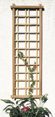 The Craftsman Trellis The simplicity of this modular trellis lends itself beautifully to any environment. Its strong, geometric design can be hung vertically or horizontally, or in a series to create a dynamic visual pattern. http://www.trellisstructures.com/trellises/craftsman-trellis.html