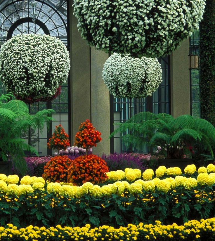 Best 25 Kennett Square Ideas On Pinterest Longwood Gardens Botanical Gardens And Tropical