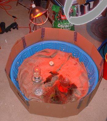 Brooder Using A Kiddie Pool Amp Cardboard Chicken Coop