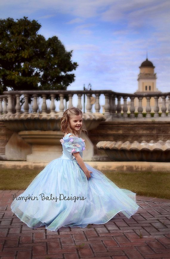 Cinderella Dress - Cinderella Costume - Cinderella Tutu - Princess Dress - Princess Costume - Cinderella Birthday - Cinderella Party