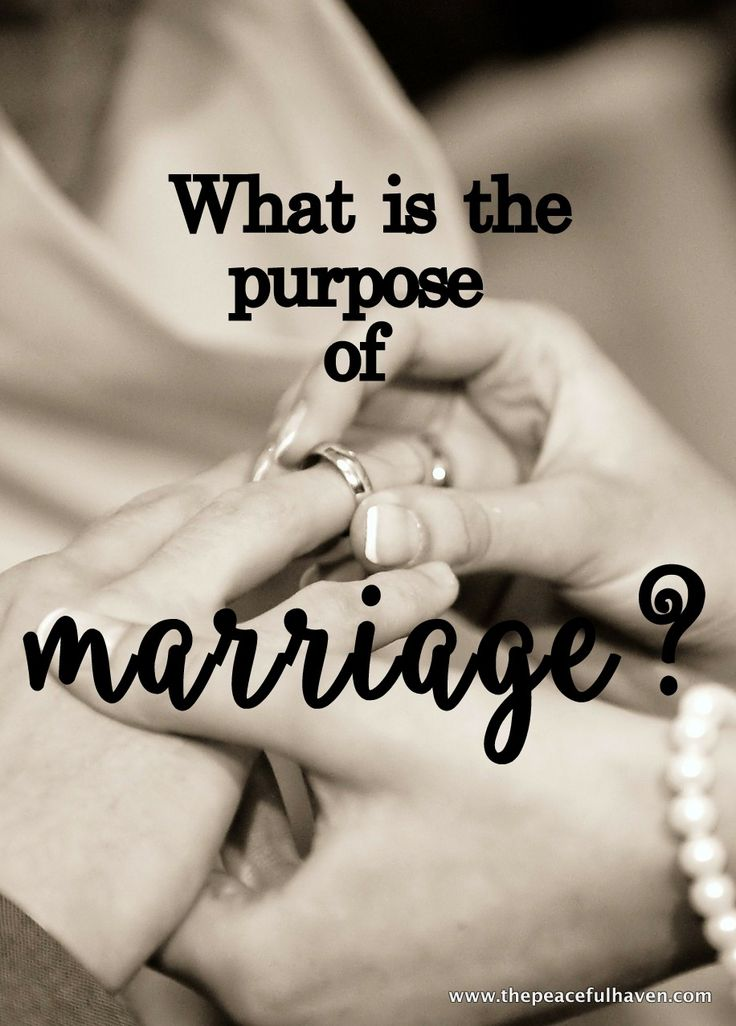 Have you ever wondered?  What does the Bible say about MARRIAGE?