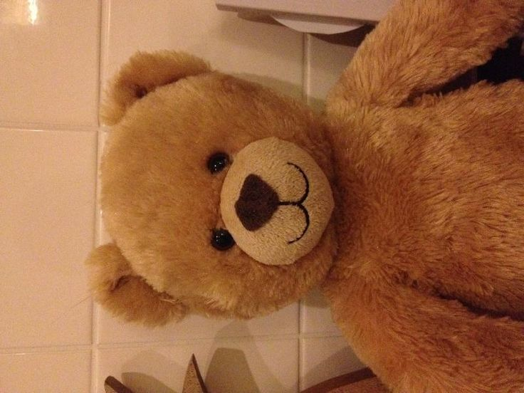 Found on 19 May. 2016 @ Cedars Road, Hampton Wick . Found this chap out in the rain last night near Bushy Park, Teddington. I think he'd like to go home. Visit: https://whiteboomerang.com/lostteddy/msg/zs3ppp (Posted by Charlotte on 20 May. 2016)