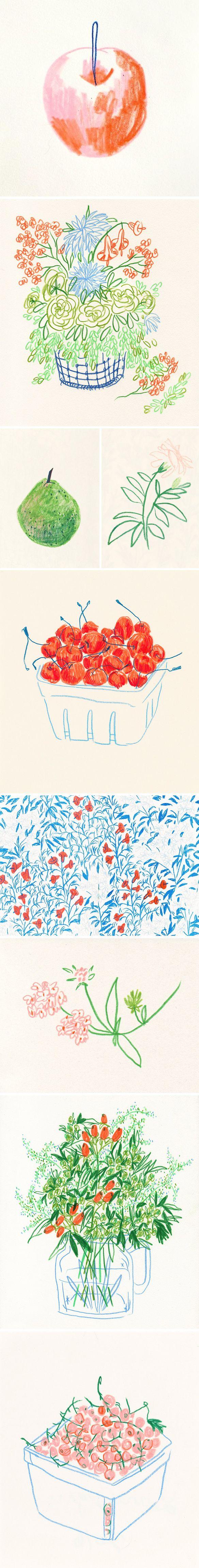 Ilustrações de Liana Jegers