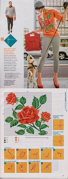 提花 针织 中 袖 - 蕾妮 的 日志 - 网易 博客