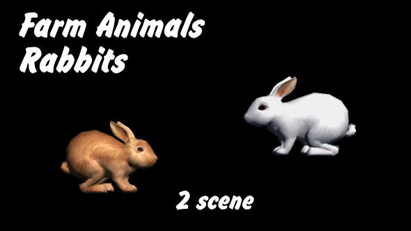 Farm Animals - Rabbits - 2 Scene