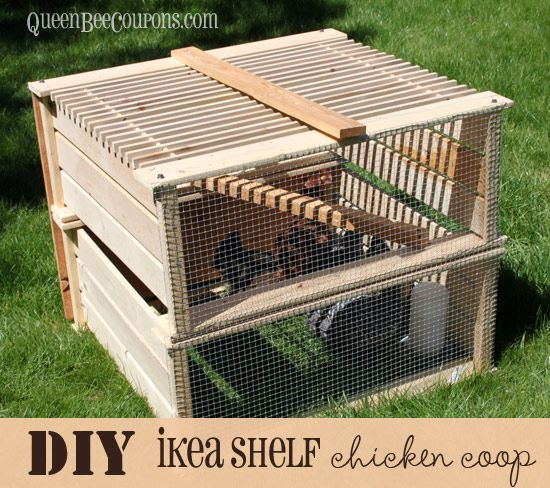 101 Best Images About Chickens Coop Design On Pinterest