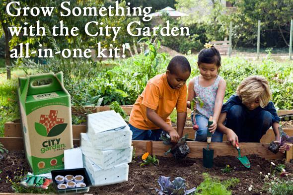 The FibreDust City Garden Grow Kit gets kids growing with all the ingredients you need for success; seeds, fertilizer, growing media and seed starting trays/plugs. #getgrowing #garden #family #seedstart